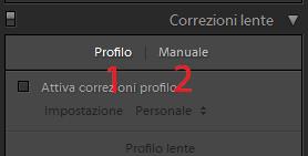02 lightroom correzione automatica distorsioni obiettivo profilo manuale