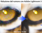 <b>Le novit di Lightroom 3: Riduzione del rumore digitale</b>