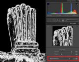 <b>Miglioramento della nitidezza delle immagini</b>