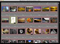 Visualizzare Lightroom a schermo intero