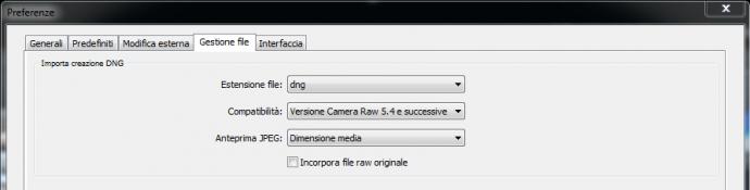 01 lightroom raw dng conversione importazione preferenze gestione file copia