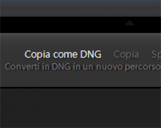 <b>Come convertire i file RAW in DNG con Lightroom</b>