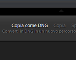 05 lightroom raw dng conversione importazione preferenze gestione file copia