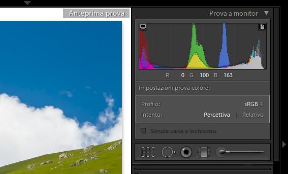 03 lightroom sviluppo prova colore monitor soft proofing profilo stampa stampante intento rendering