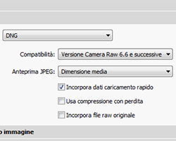 01 lightroom dng conversione convertire raw libreria importazione th
