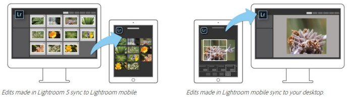 adobe lightroom mobile ipad tutorial guida gratis 04